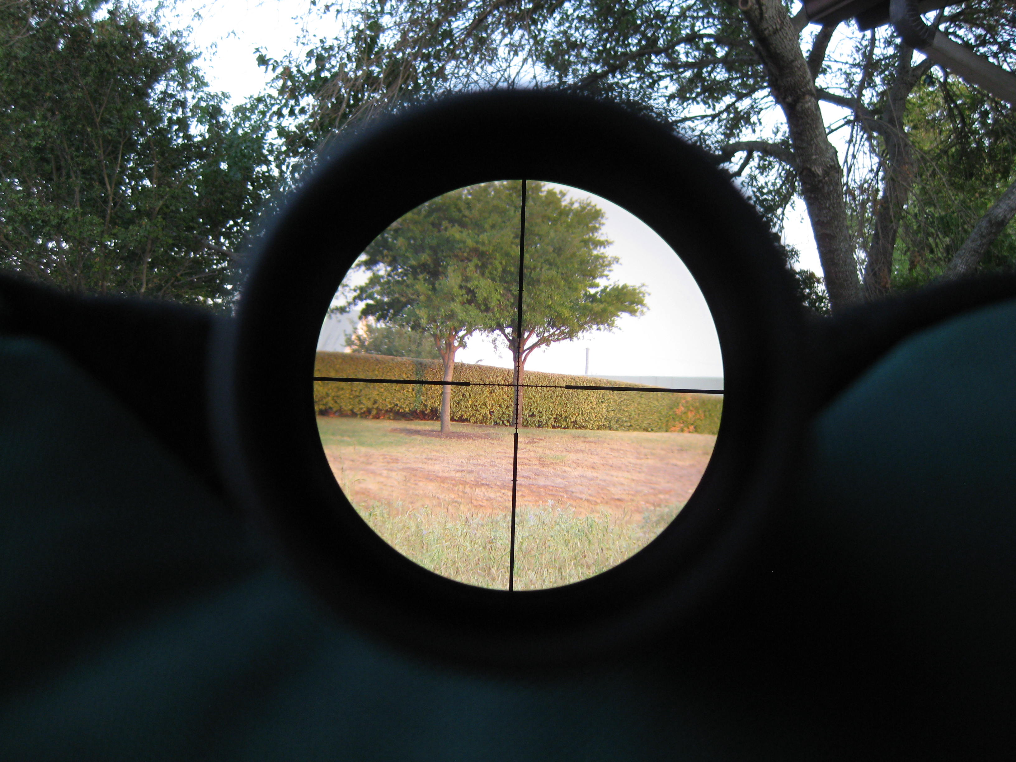 Bigjimfish review of the leupold mark 6 1-6x20mm with 5. 56 cmr-w.