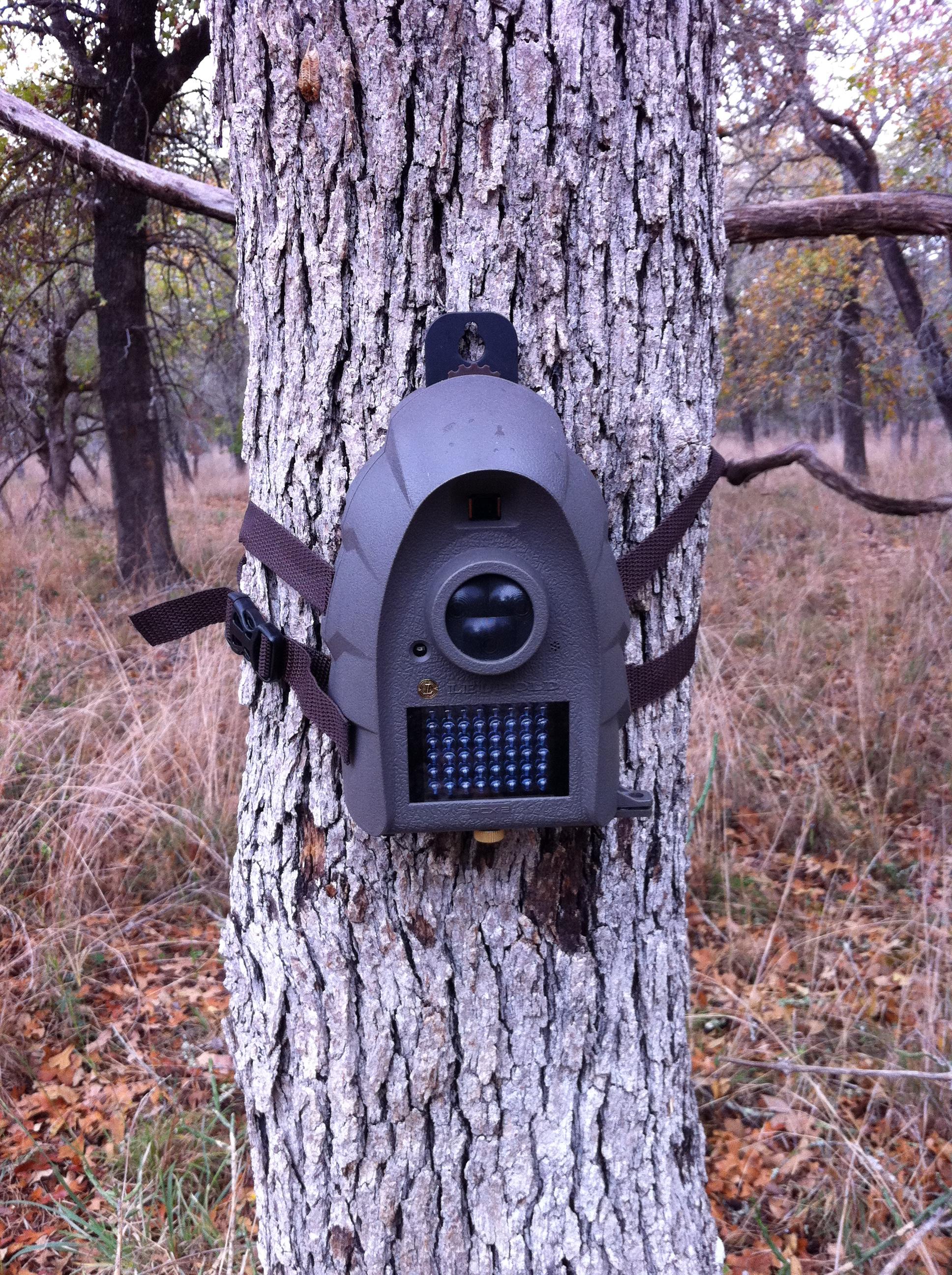 Leupold RCX-2 Trail Camera Review