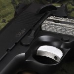 Dan Wesson Valor 600 pic