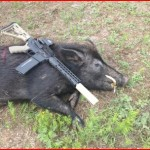 Dead Hog