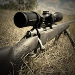 Survey: Which rifles are you going to be hunting with ?