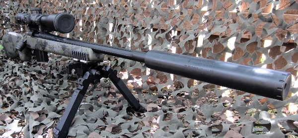 Rem LTR 308 with Kahles and Templar Tactical