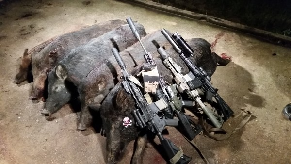 Hog hunting guns