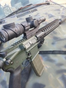 Trijicon Accupoint 1-6 on a WIlson Combat 6.8