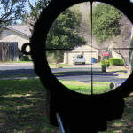 Steiner T5Xi 1-5 reticle picture at 5x at 250 yards