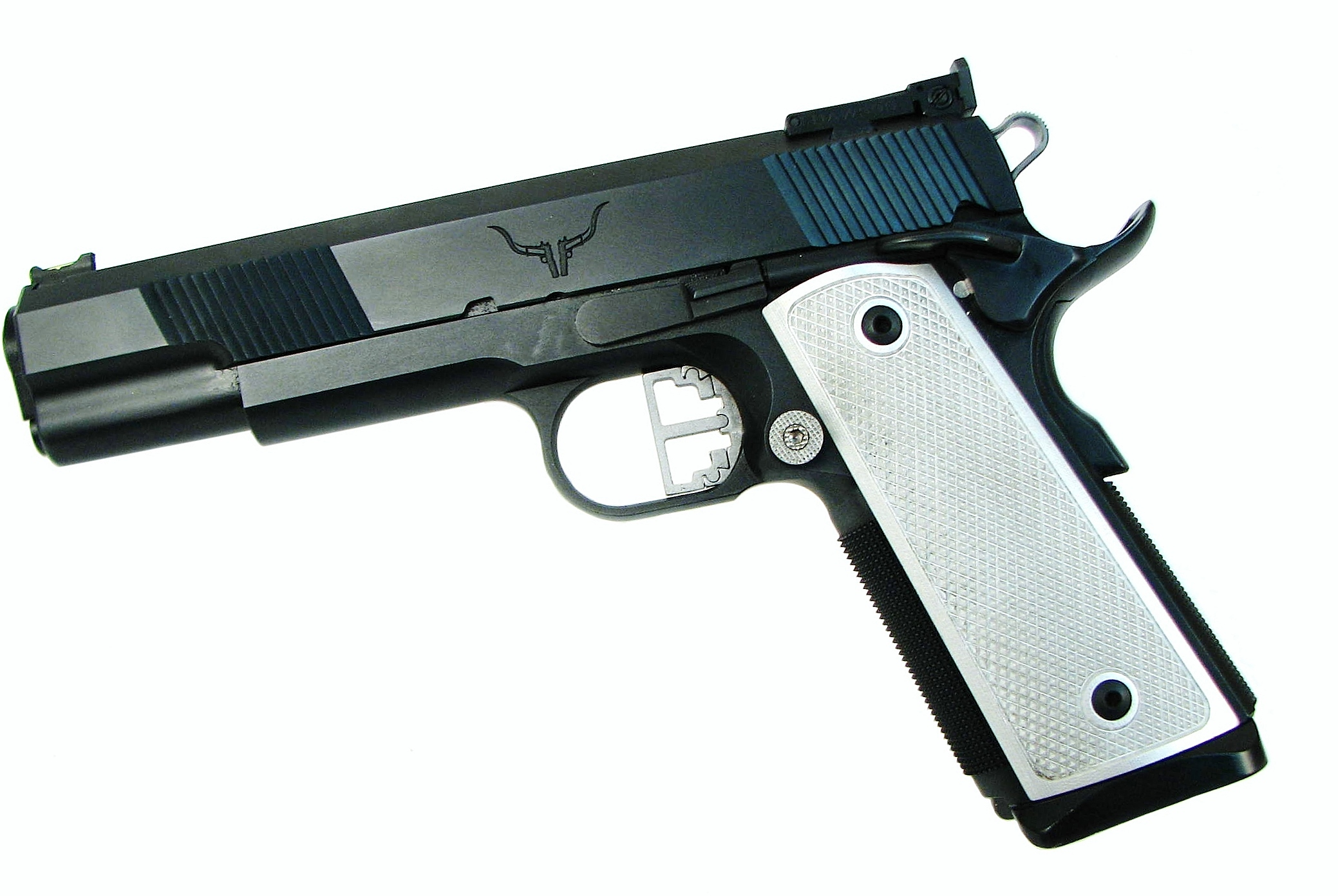 Hayes Custom Guns 1911 9mm Build