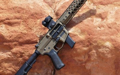 Wilson Combat AR9 Review